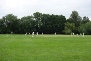 General cricket