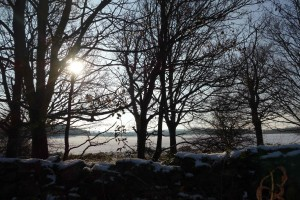 Snow in Lough 2
