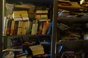 Attic book shelves