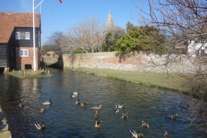 Bosham ducks