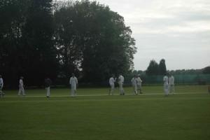 Ben and Andrew cricket