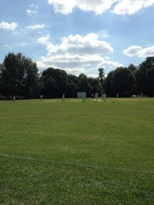 Watching the Freemans play at our local cricket club. This happened every weekend, but I'll spare you more pictures.