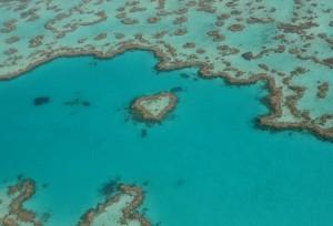 Heart reef 1