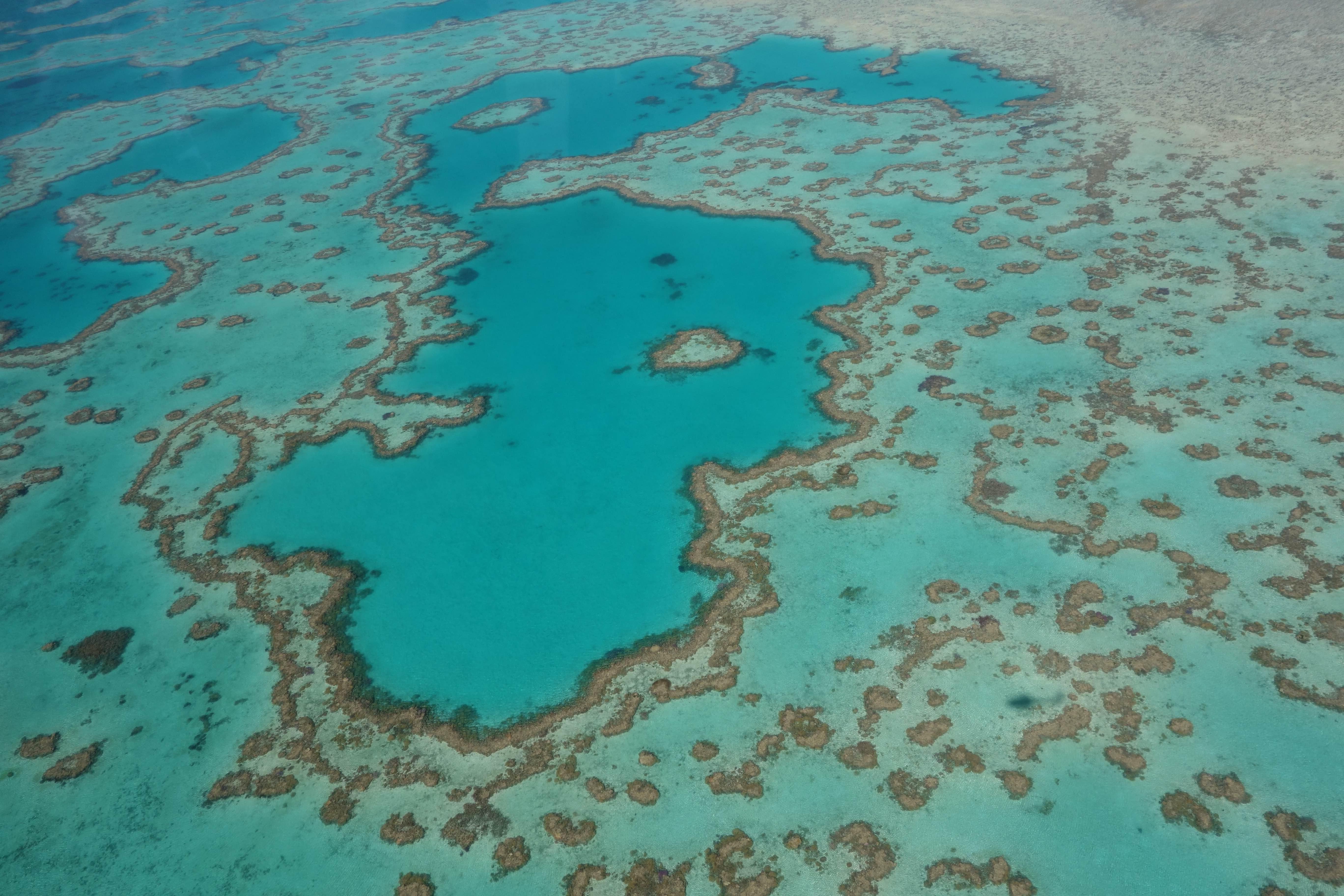 Heart reef 2
