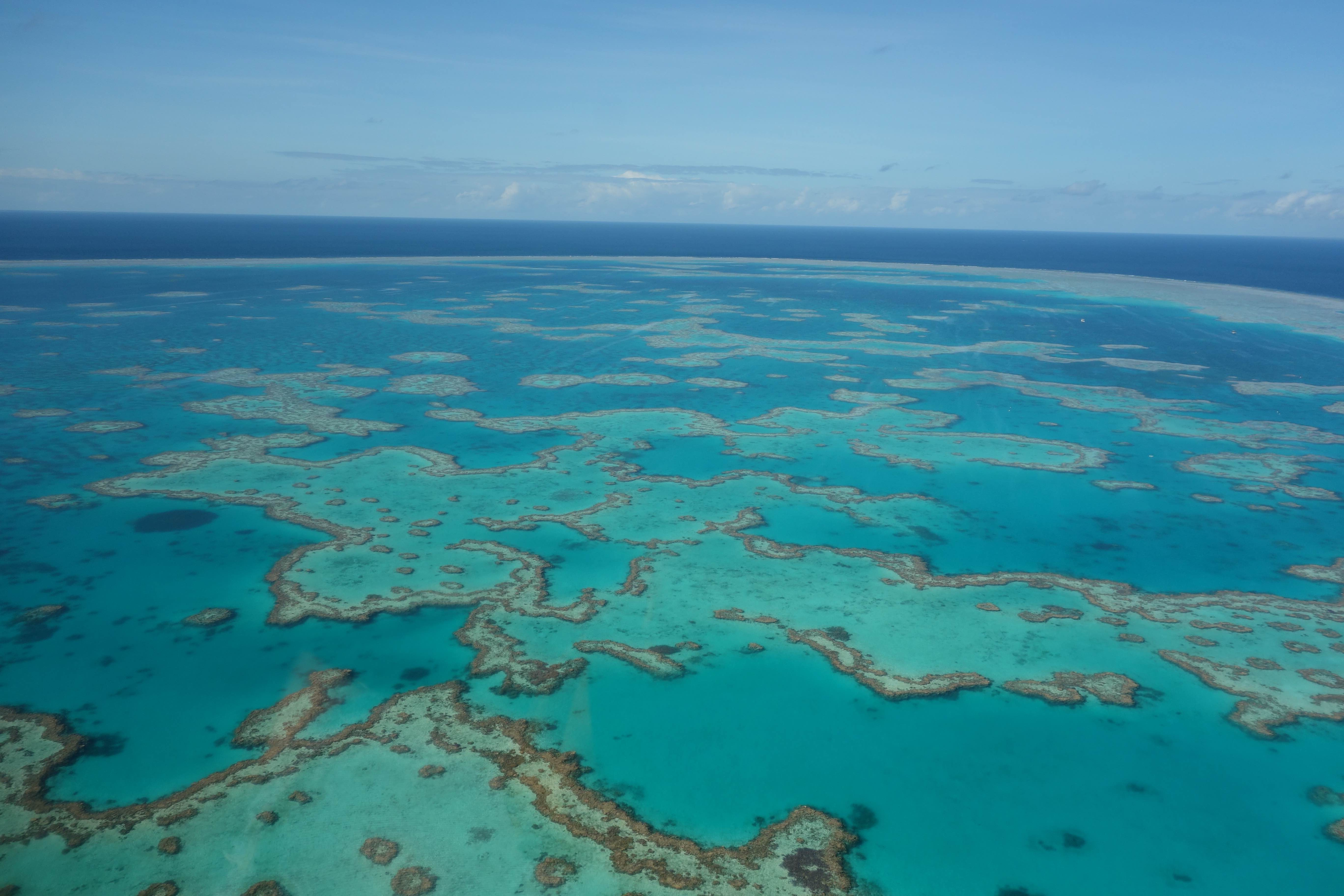 Reef from chopper 1