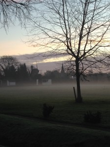 Wraysbury green in mist